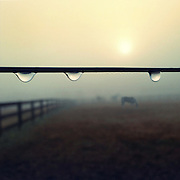 Three drops of water hang off a wire fence on a farm.