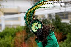 A female racegoer holds on to her fascinator during Ladies Day of the 2018 Cheltenham Festival at Cheltenham Racecourse.