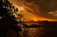 Dramatic thunderstorm coming over the delta at dusk, Crisan, Danube Delta, Romania.