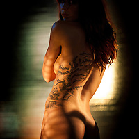 Beautiful woman, nude, with tattoo of blowing branches on her back and dramatic lighting.