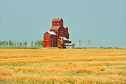 Grain elevator and canola crop<br />Duval<br />Saskatchewan<br />Canada