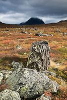 Arctic mountain landscape in autumn, Lapland, Sweden
