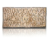 """6th century Inscription of the great hall of the synagogue of Nam-Ham-mam-Lif in the Roman province of Africa Proconsularis, present day Tunisia. The mosaic floor of the vestibule (porticus) was an offering from Asterius son of Rusticus, the Head of the Jewish community who was working in the Naro jewellers trade. The mosaic reads in Latin  """"Asterius, filius Rustici, arcosinagogi, margaritari, (de d(onis) dei partemporticites-selavit"""".  The Bardo National Museum, Tunis Tunisia.  Against a white background.<br /> <br /> The so called synagogue of Naro (Hammam-Lif, Tunisia), discovered in 1883, is a square buil-ding (20 by 20 m), consisting of several rooms and hallways communicating with an inner courtyard. The plan is inspired by traditional domestic architecture of Roman Africa. The room, dedicated to religious ceremonies, was paved with a magnificent mosaic of several figured panels with an iconography highlighting Judaeo-Christian concepts, attesting a proselyte attitude addressing a local Judaic community, who was very active between the late fifth c. and the early sixth century AD."""