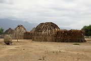 Africa, Ethiopia, Omo valley, Arbore tribe hut