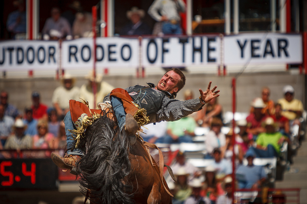 JUSTIN MILLER performs in the Bareback Riding competition during Cheyenne Frontier Days, the world's largest outdoor rodeo.