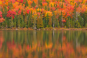 Autumn  colors reflected in Lac à Sam in the Laurentian Mountains. Great Lakes - St.  Lawrence Forest Region.<br />La Mauricie National Park<br />Quebec<br />Canada
