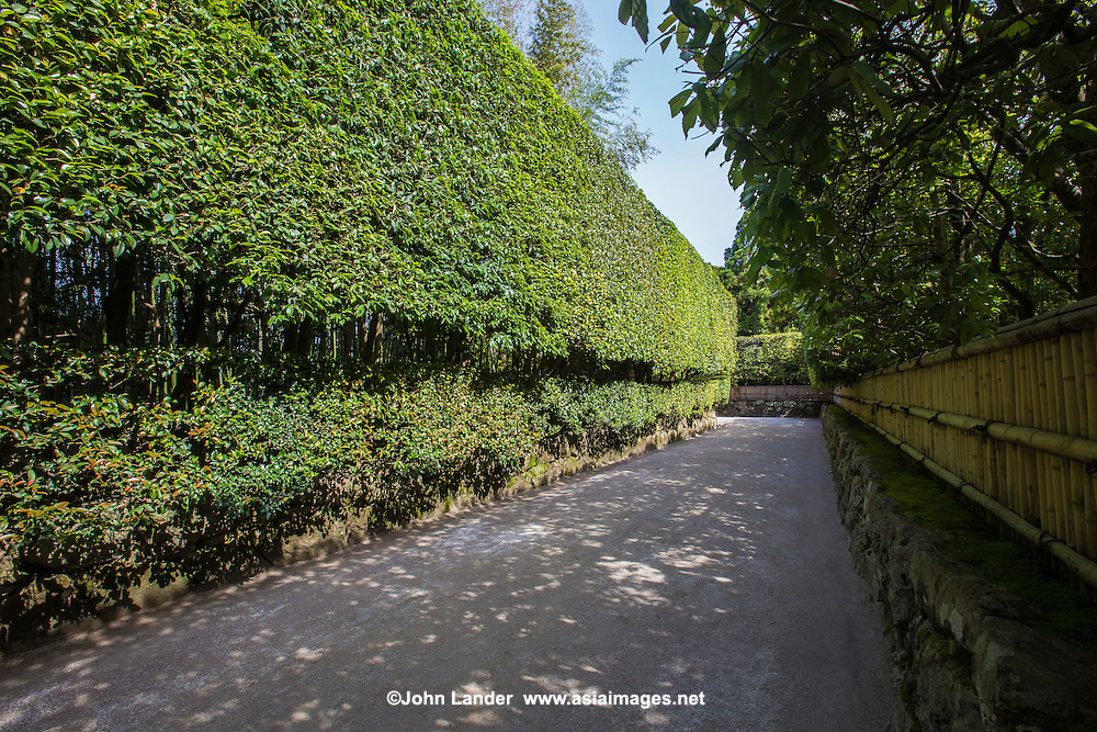 Japanese Garden Pathway - there are many elements to a Japanese garden: paths, stepping stones, teahouses, stones, trees, hedges and plants arranged artfully to create a mood or atmosphere.