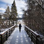 Winter walk in Mammoth Lakes, CA. Model released.