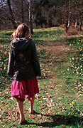 A913GE Young girl walking in daffodil woods in springtime
