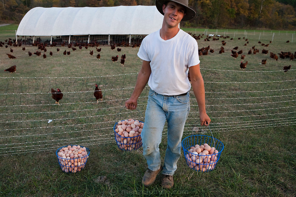 Farmer Joel Salatin's apprentice, Andy Wendt carries eggs from the portable chicken house back to the the farm house in Shenandoah, Virginia. (From the book What I Eat: Around the World in 80 Diets.)