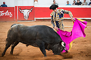 Mexican Matador Paco Urena presents his cape to the bull as it charges during a bullfight at the Plaza de Toros in San Miguel de Allende, Mexico.
