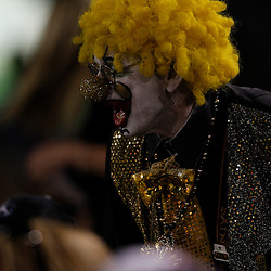 Apr 28, 2010; Metairie, LA, USA; A New Orleans Saints fan cheers from the stands during the Heath Evans Foundation charity softball game featuring teammates of the Super Bowl XLIV Champion New Orleans Saints at Zephyrs Field.  Mandatory Credit: Derick E. Hingle-US-PRESSWIRE.