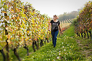 A woman walks alone through a vineyard in the famous Barolo wine country of Piedmont, Italy, near the town of La Morra.