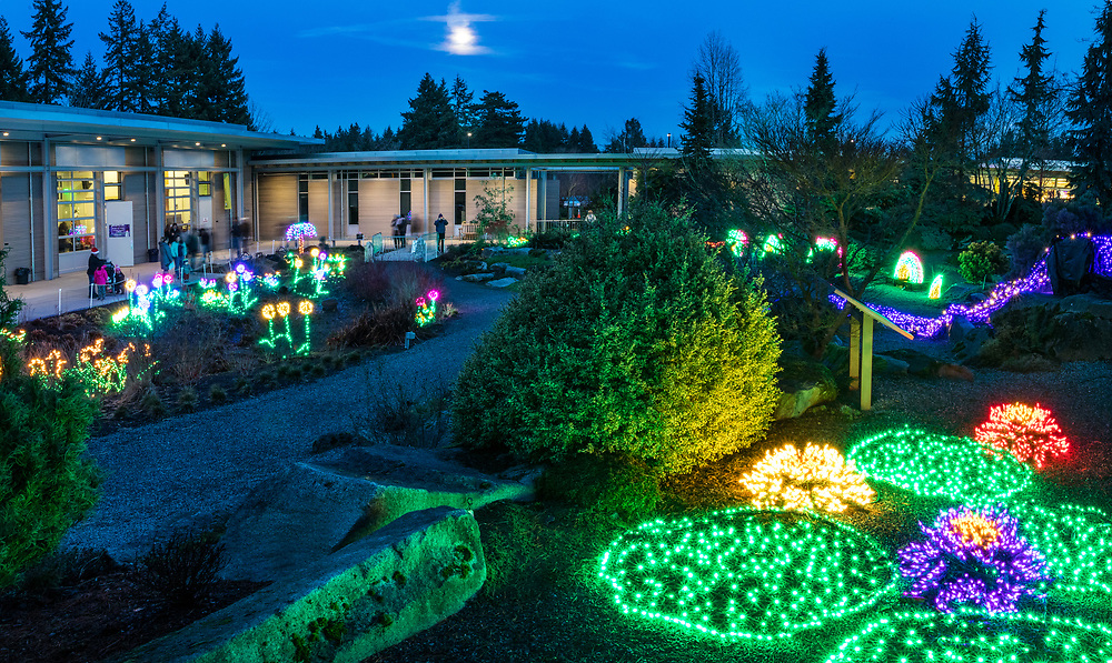 New Years eve at the bellevue Botanical Garden, Garden d'Lights.<br /> with  a supper moon