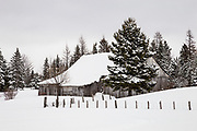 Old barn under the snow, road 204.