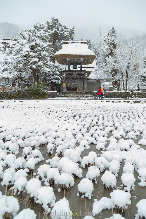Scenic winter landscape with covered in snow temple, Shirakawa-go, Japan