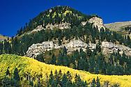 San Juan Nat Forest Colorado