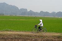 Vietnam. Region de Ninh Binh. Kenh Ga. // Vietnam. Ninh Binh area. Kenh Ga.