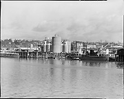 "Ackroyd 05917-4. ""Balfour - Guthrie."" (area near Albina Engine & Machine Co.) ""Permanente Cement co. dock. March 9, 1955"""