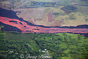 aerial view of lava river, originating from  fissure 8 in east rift zone of Kilauea Volcano, and flowing as a river of lava through agricultural fields in Kapoho, Puna District, Hawaii ( the Big Island ), Hawaiian Islands, U.S.A.