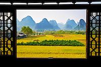 Chine, Province du Guangxi, region de Guilin, riziere et montagnes en forme de pains de sucre, region de Yangshuo // China, Guangxi province, Guilin, Karst Mountain Landscape and rice field around Yangshuo
