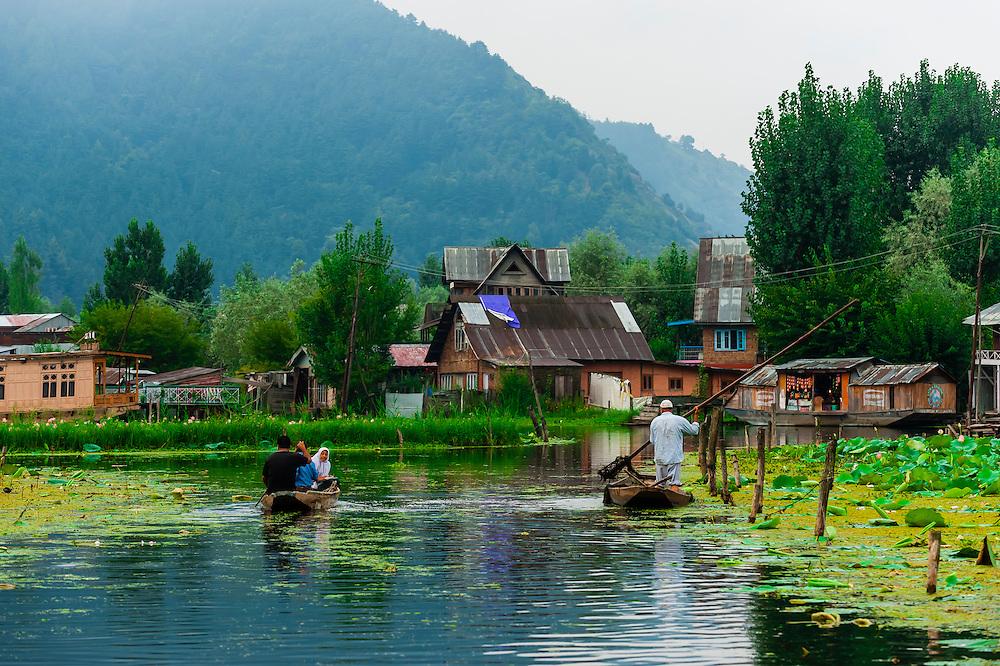 Shikaras, Dal Lake, Kashmir, Jammu and Kashmir State; India.