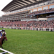 A panoramic view of horses passing the finish line showing the main stand in the background at the Royal Ascot race meeting. Royal Ascot. England, UK. June 16-20th, 2009. Photo Tim Clayton