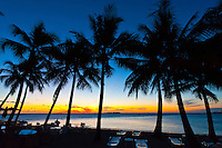 Palm trees, Le Meridien Nouméa Beach Resort Hotel, Anse Vata Beach, Noumea, Grand Terre, New Caledonia