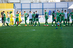 teams shaking hands after  football match between NK Olimpija Ljubljana and NK Domžale in 24rd Round of Prva liga Telekom Slovenije 2018/19, on March 30, 2019 in Sports park Domzale, Slovenia Photo by Matic Ritonja / Sportida