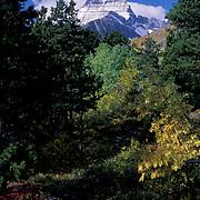 Glacier National Park, Autumn in the park. Montana.