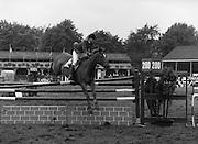 """07/08/1980<br /> 08/07/1980<br /> 07 August 1980<br /> R.D.S. Horse Show: John Player Top Score Competition, Ballsbridge, Dublin. Katie Monahan, (U.S.A.) on """"Inside Edge""""."""