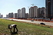 """Workers uproot indigenous desert plants to make room for a new flower bed close to a densely built residential apartment development near the Kangbashi New District of Ordos City, Inner Mongolia, China on 16 August, 2011. With an investment of over 161billion USD from the local government and revenue from the region's rich coal deposits, enough buildings have risen on the site of an old desert village to hold at least 300,000 residents, complete with ultra modern facilities and grand plazas. The district however is less than 10% occupied, dubbed the """"ghost city"""", Kangbashi epitomizes China's real estate bubble and dangers in mindless investment fueled economic  growth. In 2011, the real estate price of Ordos city has dropped over 70%."""