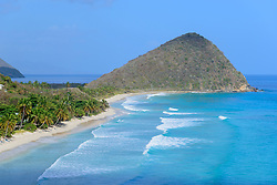 Strand bei Long Bay Beach Club mit Palme, Beach near Long Bay Beach Club with palms, Insel Tortola, Britische Jungferninsel, Karibik, Karibisches Meer, Tortola Island, BVI, British Virgin Islands, Caribbean Sea