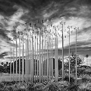 Weather Field No. 1 is a site-specific sculpture composed of 49 telescoping stainless steel poles aligned in a highly ordered grid. Alternating at heights of 19, 20 and 21 feet, each pole supports a weather vane and anemometer. These finely tuned instruments are designed to accurately respond to prevailing wind conditions, gauging wind speed and direction. In Weather Field, the close grouping of the poles augments the instruments' standard function. Instead of only mapping the wind in a conventional manner, the sculpture also uses crowding as a condition to trigger and reveal turbulence, a much more mysterious phenomenon. Weather Field strikes a balance between the order of the instrument grid and the unpredictable response of its kinetic elements to produce its own microclimate. In its peculiar climate the instruments influence and react to one another, flocking and schooling like birds in the air and fish in sea.