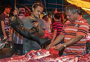 Buying dog for food at Tomohon extrem market, Minahasa, north Sulawesi, Indonesia.