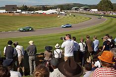 Chichester- Goodwood Revival vintage sports car race - 11 Sep 2016