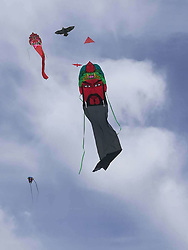 August 26, 2017 - Hohhot, Hohhot, China - Hohhot, CHINA-26th August 2017: (EDITORIAL USE ONLY. CHINA OUT) ..A kite flying contest is held in Hohhot, north China's Inner Mongolia, August 26th, 2017, featuring various kites including 100-meter-long dragon shaped kite, giant tyre shaped kite and octupus shaped kite. (Credit Image: © SIPA Asia via ZUMA Wire)