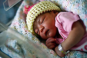 William DeShazer/Staff<br /> Mazil Izaira Moralez, of Lehigh Acres, rest comfortably in her hospital room at Gulf Coast Medical Center on Tuesday Jan 1, 2013. Moralez was born at 1:32am and weighed seven pounds and fifteen ounces.