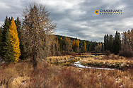 The Stillwater River in autumn near Whitefish, Montana, USA