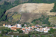 vineyards a village douro portugal