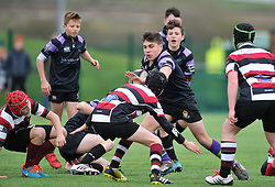 - Mandatory by-line: Paul Knight/JMP - 19/03/2017 - RUGBY - SGS Wise Campus - Bristol, England - Bristol Rugby Foundation Nando's Cup