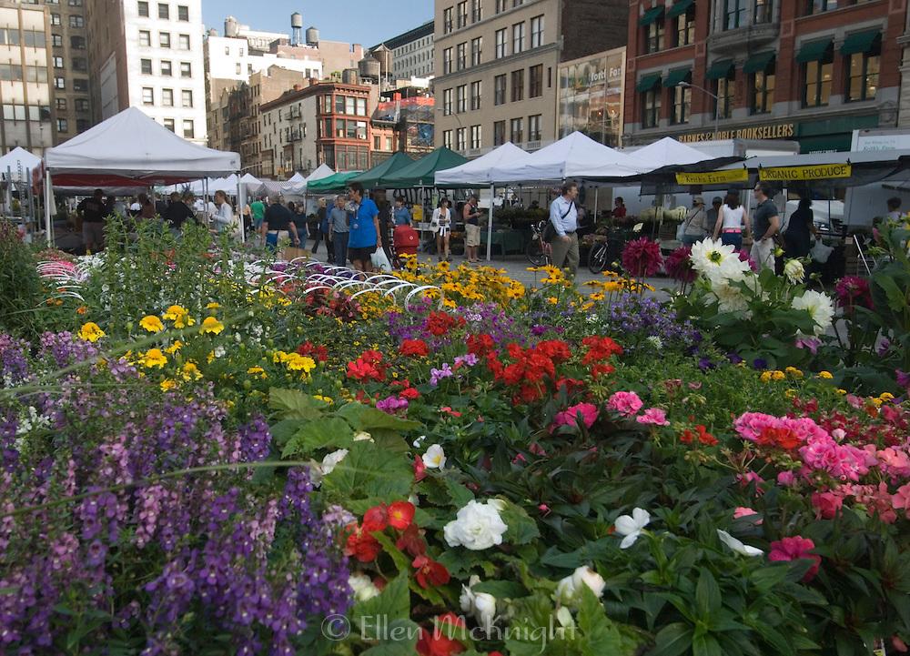 Union Square Farmer's Market in Manhattan