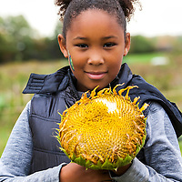 A young African-American teenage girl holds a large sunflower