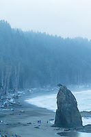 Rialto Beach in Olympic National Park, WA