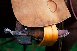 Cowboy boot in a stirrup