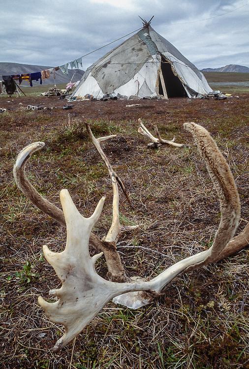Chukchi reindeer camp, Senyavina Strait, Chukotsk Peninsula, NE Russia, 1992