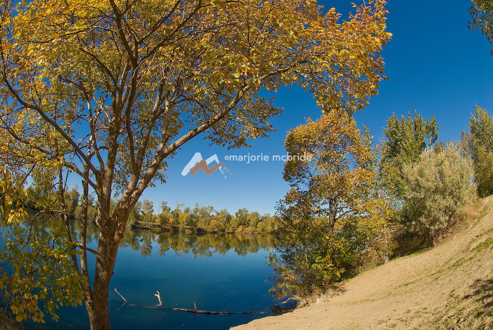 Autumn on the lake in Veteran's Memorial Park near the Boise River and green belt.  Boise, Idaho.