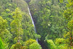 Kahuna Falls, drop 100 feet, view from Akaka Falls State Park, Hilo, Big Island, Hawaii