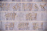 Iran, province du Fars, Persepolis, patrimoine mondial de l'UNESCO, écritures cunéiforme // Iran, Fars Province, Persepolis, World Heritage of the UNESCO, carved cuneiform script