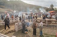 TURKEY, Izmir, Selçuk. Camel wranglers prepare themselves and their equipment before the start of the  35th annual Selçuk Camel Wrestling Festival.
